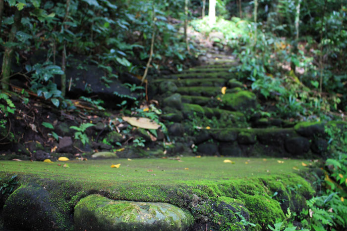 Cabunsod Spring - Steps to Malabanban